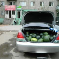 Trunk o' watermelone!