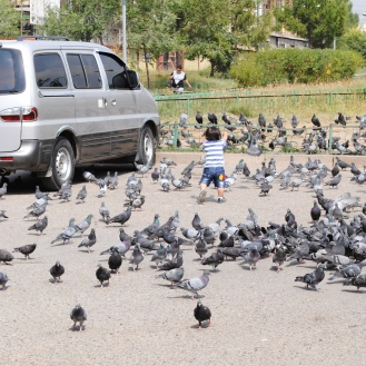 This little toddler's greatest joy was being around the pigeons. :)