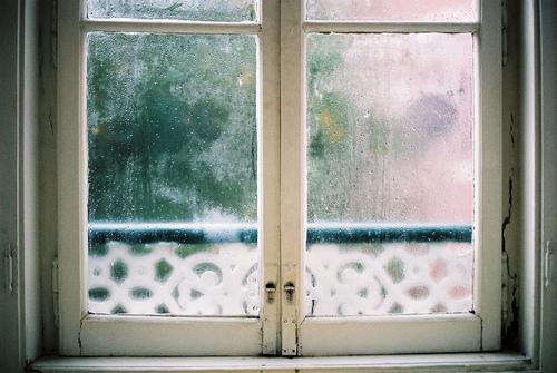 hipster window