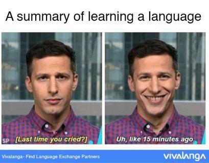 brooklyn 99 language learning meme